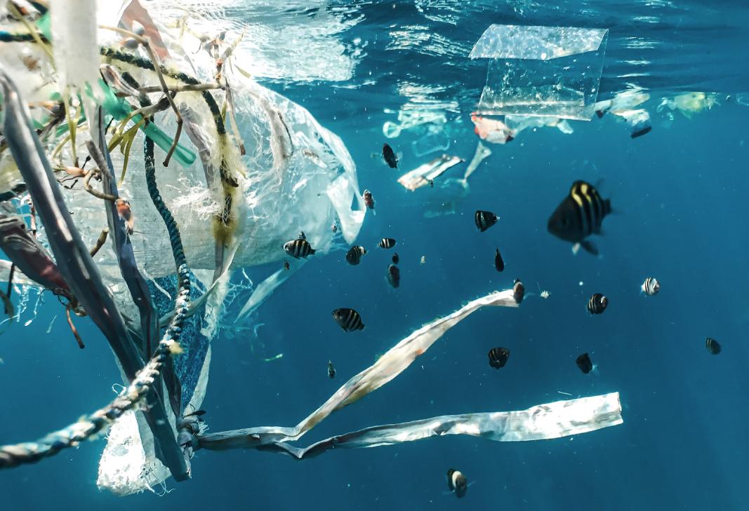 Ocean plastic | A.D.